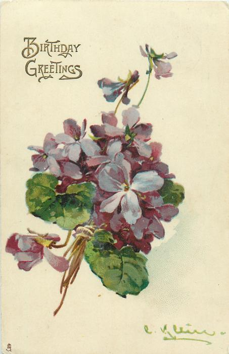 bunch of purple violets, stalks low left, main bunch of flowers middle of card