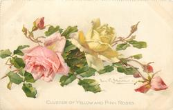 CLUSTER OF YELLOW AND PINK ROSES