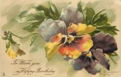 TO WISH YOU A HAPPY BIRTHDAY  multicolored pansies