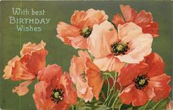 WITH BEST BIRTHDAY WISHES  red & pink poppies, green background