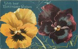 WITH BEST BIRTHDAY WISHES  yellow pansy left, purple pansy right
