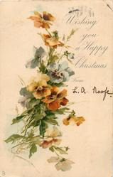 WISHING YOU A HAPPY CHRISTMAS pansies