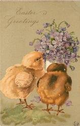 EASTER GREETINGS  two chicks peck bunch of violets from white vase