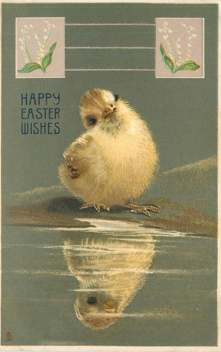 HAPPY EASTER WISHES  white chick looks at its reflection, lily-of-the-valley inserts