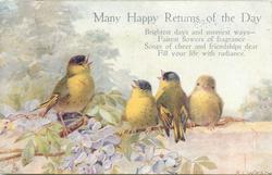 MANY HAPPY RETURNS  four blue tits