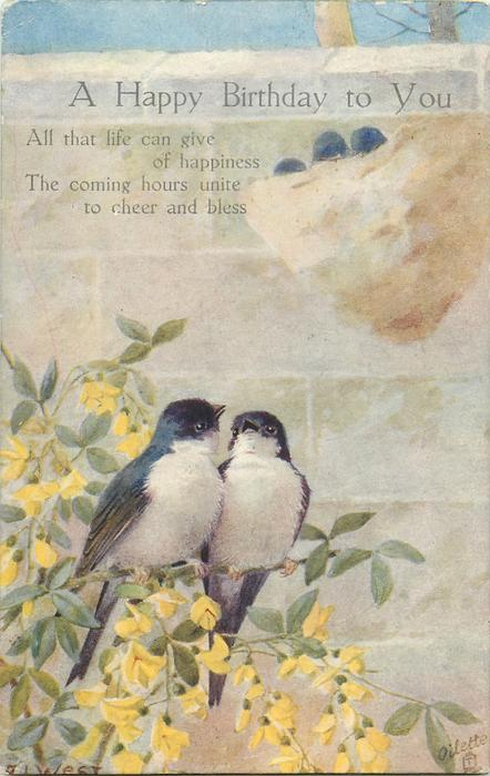 A HAPPY BIRTHDAY TO YOU  two swallows on yellow blossom branch