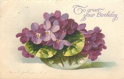 violets in clear spherical glass vase