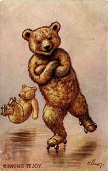 RINKING TEDDY