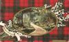"GREETINGS FROM THE TROSSACHS ""WHERE TWINES THE PATH"" TROSSACHS tartan ROBERTSON"
