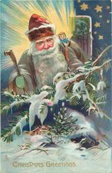 CHRISTMAS GREETINGS grey coated Santa behind evergreen spray