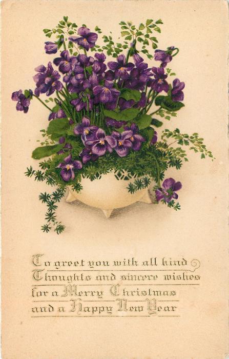 bowl of violets