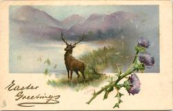 flowers to right, inset of stag facing left & away