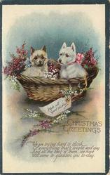 CHRISTMAS GREETINGS, WITH ALL GOOD WISHES two dogs in basket of flowers