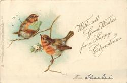WITH ALL GOOD WISHES FOR A HAPPY CHRISTMAS  two robins, one holds a fan