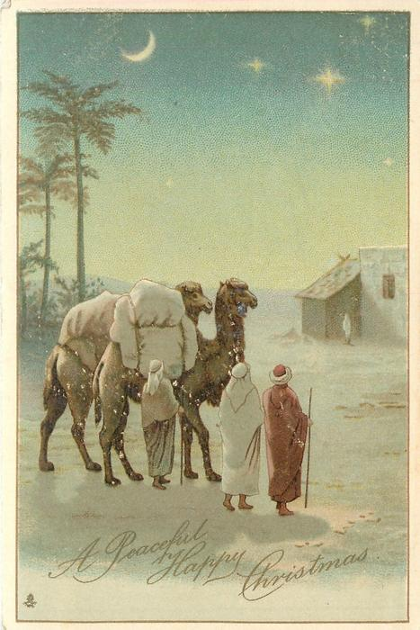 A PEACEFUL HAPPY CHRISTMAS  two camels, three wise men look at heavens