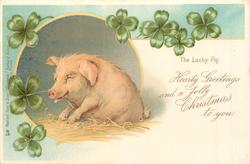 HEARTY GREETINGS AND A JOLLY CHRISTMAS TO YOU  pig sits facing left with 4 leaf clover