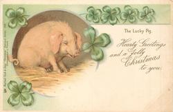 HEARTY GREETINGS AND A JOLLY CHRISTMAS TO YOU, pig sits facing right with 4 leaf clover