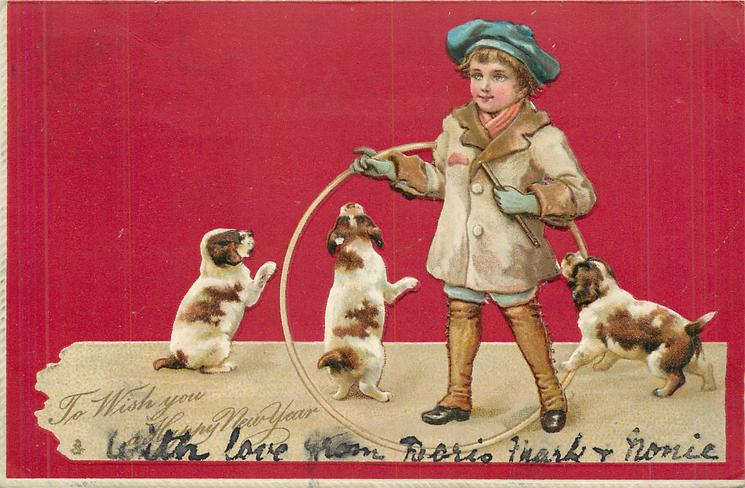 TO WISH YOU A HAPPY NEW YEAR  three puppies play with boy holding a hoop