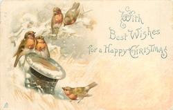 WITH BEST WISHES FOR A HAPPY CHRISTMAS  two robins on top hat, two above in tree, one on ground