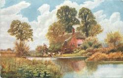 THE RIVER FARM