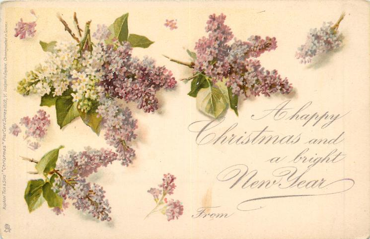 A HAPPY CHRISTMAS AND A BRIGHT NEW YEAR FROM  lilacs