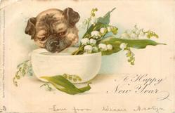 A HAPPY NEW YEAR pug & lilies of the valley