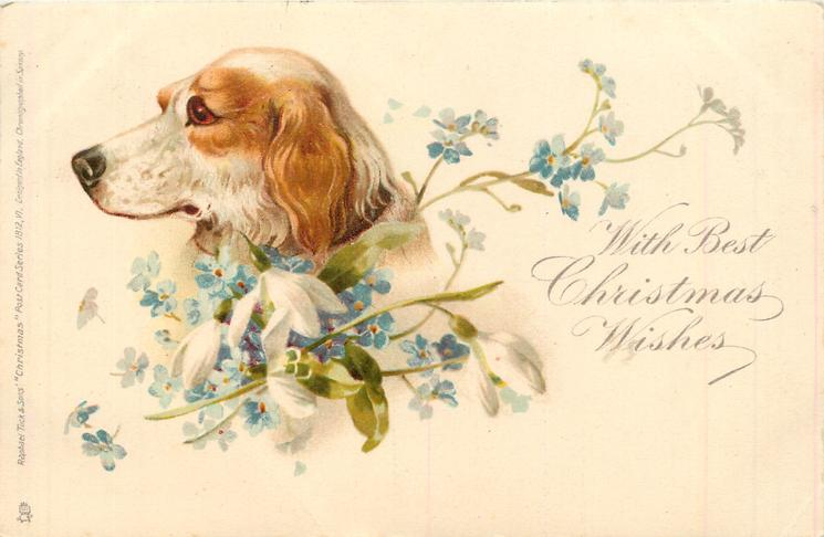 WITH BEST CHRISTMAS WISHES  setter & forget-me-nots