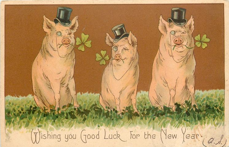 WISHING YOU GOOD LUCK FOR THE NEW YEAR  three pigs sit facing front, wearing top hats, with 4 leaf clovers in mouths