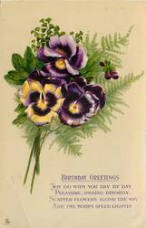 three purple pansies