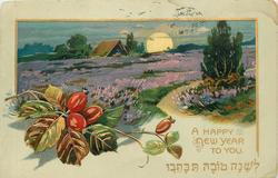 A HAPPY NEW YEAR TO YOU foliage with red berries left, field of purple flowers, sunset