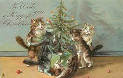 TO WISH YOU A HAPPY CHRISTMAS  five cats decorate Xmas tree