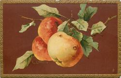 three large apples
