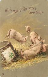 WITH MERRY CHRISTMAS GREETINGS four pigs, 4 leaf clover on basket