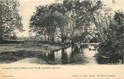 A FAMOUS TROUT STREAM NEAR FAIR HAVEN, VERMONT