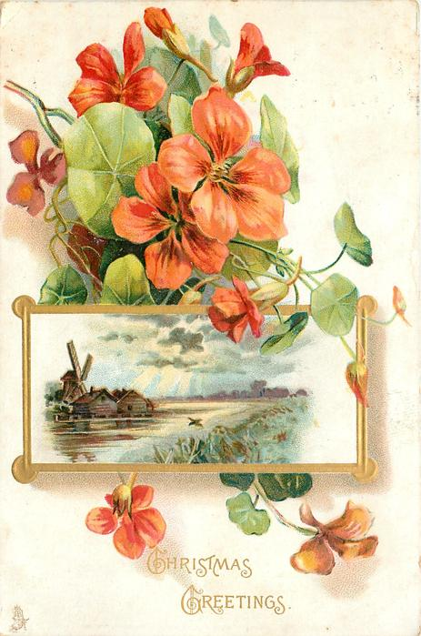 CHRISTMAS GREETINGS seven orange nasturtiums and two buds with insert of river with houses and windmill