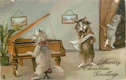 LOVING CHRISTMAS GREETINGS  cat pianist and singer