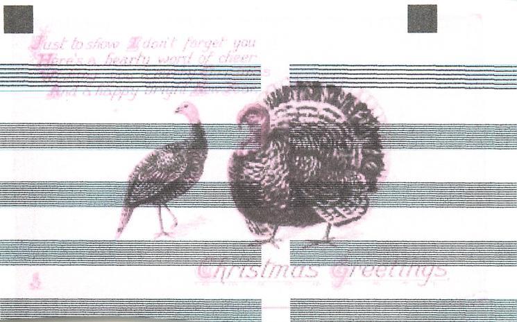 CHRISTMAS GREETINGS hen turkey left, gobbler right