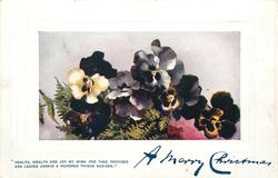 A MERRY CHRISTMAS pansies