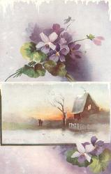 inset sunset behind house, two people stand in grass, purple pansies above & below