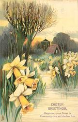 EASTER GREETINGS yellow daffodils in watery grass in front of house and church