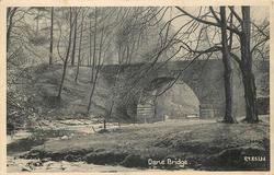 DANE BRIDGE