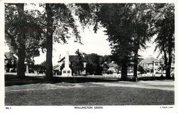 WALLINGTON GREEN