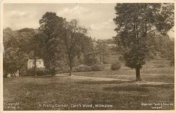 A PRETTY CORNER, CARR'S WOOD (sepia) or THE CARRS (grey)