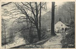 THE PINGLE, DANE VALLEY