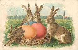 EASTER WISHES 3 rabbits watch as one rabbit hatches out of coloured egg
