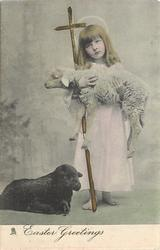 EASTER GREETINGS  girl stands carrying white lamb, black lamb lies left front