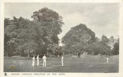 CRICKET PRACTICE AT THE NETS