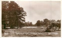 HATFIELD FOREST, LAKE AND SHELL HOUSE
