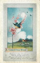 A CHRISTMAS WISH bird on blossom small blossom tree, pastoral scene behind
