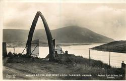 WHALE BONES AND WEST LOCH